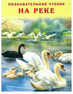 Познавательное чтение «На реке»