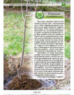 Мой прекрасный сад: время выбирать саженцы 5-6 / 2018 Спецвыпуск «Сад, огород - кормилец и лекарь»