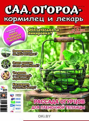 Рассада огурцов для пленочной теплицы 6 / 2018 Сад, огород- кормилец и лекарь