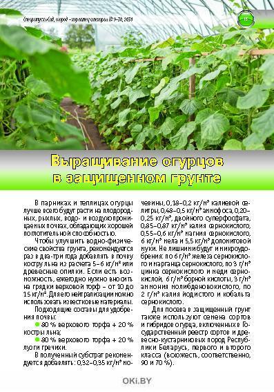 Огурцы и помидоры на любой вкус 9-10 / 2018 Спецвыпуск «Сад, огород - кормилец и лекарь»
