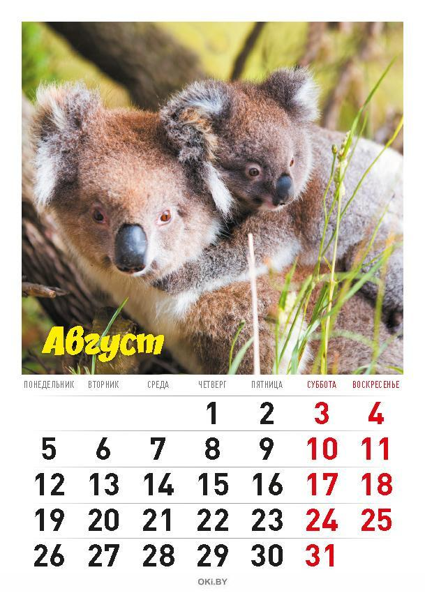 Календарь «В мире животных» на 2019 год