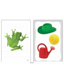 Развивающие карточки. Цвета (набор из 32 карточек)